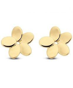 Gouden oorbellen new bling 9nbg-0043 - Trendy Juweeltjes